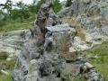 Sculpture Naturelle
